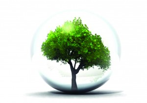 environnement (1)